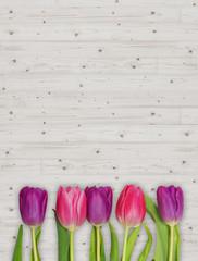 Tulpen auf hellem Holz