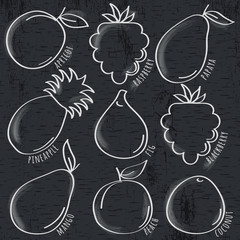 set of organic  fruit  on  blackboard, vector