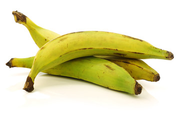 fresh still unripe plantain (baking) bananas on a white backgrou