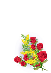 Mimosa e Rose