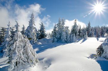 Winter Landscape - Transylvania