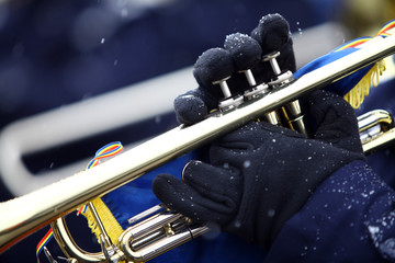 Winter trumpet