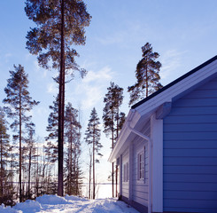 Winter lake in forest with house