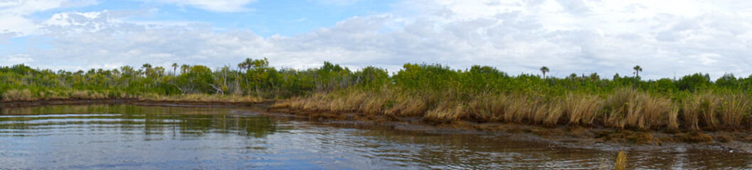 Panorama Everglades