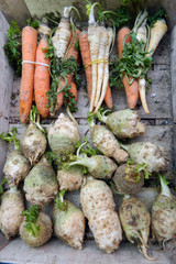 Celery, carrot, parsnip