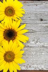 Sunflowers on Vintage Wood