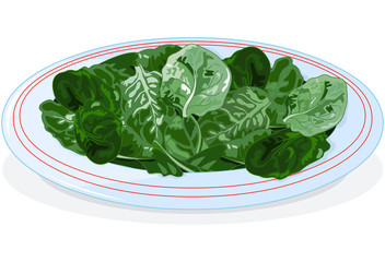 Plate of spinach