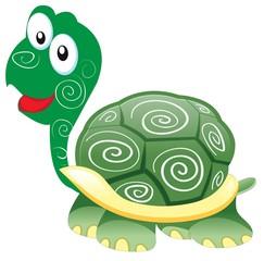 turtle is very happy