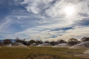 sprinkler in a park