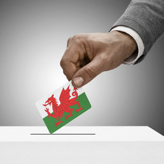 Black male holding flag. Voting concept - Wales