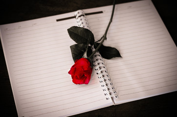 Red rose on notebook