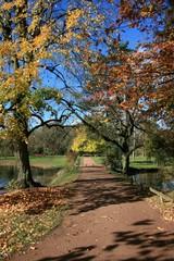 Herbstweg im Ballypark