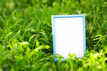 photo frame isolated on green grass
