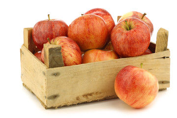"""fresh """"royal gala"""" apples in a wooden crate on a white backgroun"""