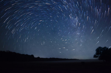 Printed kitchen splashbacks Night beautiful night sky, spiral star trails and the forest