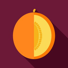 Melon flat icon with long shadow