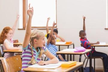 Pupils raising their hands during class