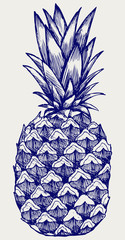Ripe tasty pineapple. Doodle style