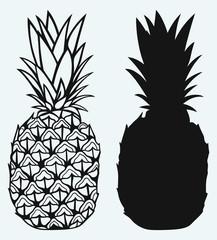 Ripe tasty pineapple isolated on blue background