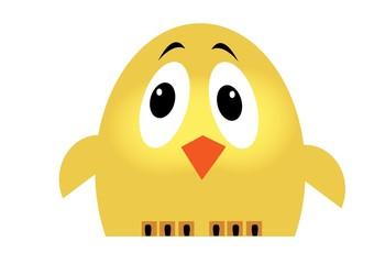 kurczak,sowa,ptak