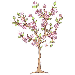 spring tree on white background