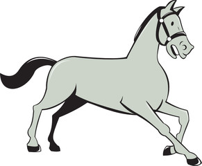 Horse Trotting Side Cartoon Isolated