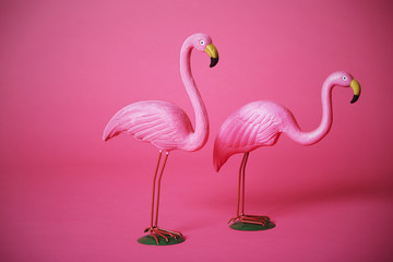 Foto op Aluminium Flamingo Pink flamingoes in studio