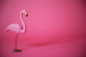 Tuinposter Flamingo Pink flamingo in studio