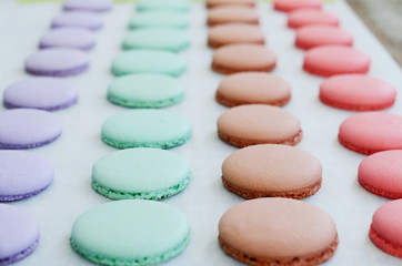Lavender, mint, caramel and pink macaroon cups over baking paper