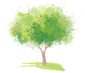 Vector green tree isolated.