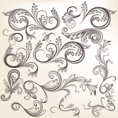 Collection of vector  hand drawn swirl ornaments in vintage styl