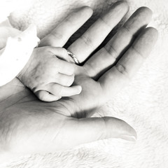 Closeup newborn baby holding his mothers finger