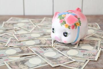 ブタ貯金箱と一万円