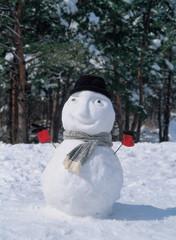 겨울 눈사람