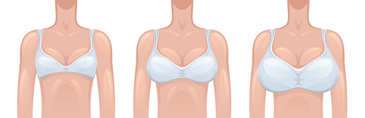 Woman breast size