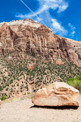 Wall Mural - Zion National Park