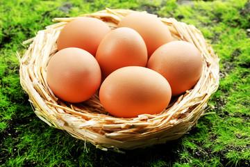 Chicken eggs in nest on green grass background
