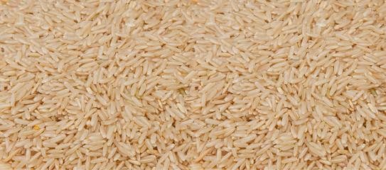 Rice background