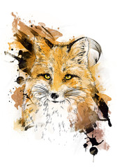 Fox. Graphic drawing.