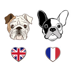 English bulldog face and French Bulldog face  with  heart flags.
