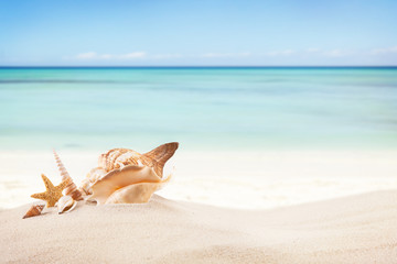 Sandy beach with blank paper for text