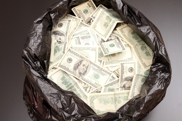 Rubbish bag with dollars