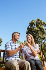 Couple relaxing in the park with wine