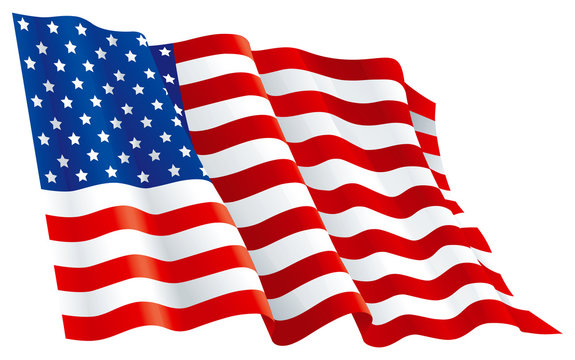 Vector  American flag  isolated on white background
