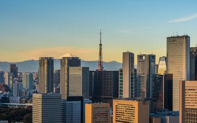 Tokyo aerial panoramic view