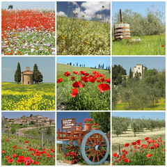 fantastic tuscan spring  collage