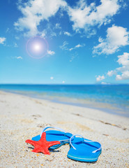 flip flops and red starfish by the sea under the sun