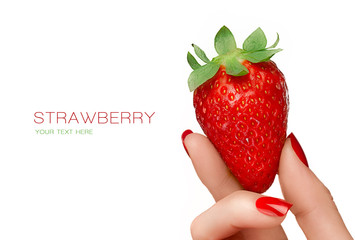 Female Hand Holding a Luscious Ripe Strawberry. Template Design