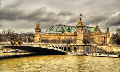 Pont Alexandre lll and Le Grand Palais in Paris, France Fototapete