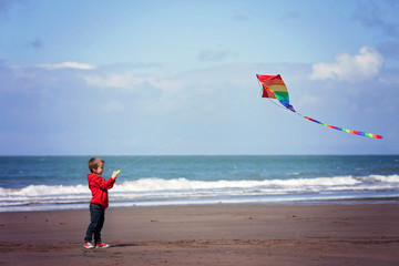 Cute boy with kite on the beach